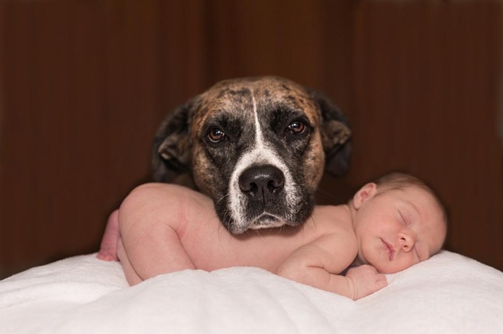 7 megdöbbentő bababiztonsági hiba, amit te is valószínű, hogy elkövetsz nap mint nap!